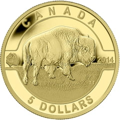 2014 $5 O Canada - Bison 1/10thoz. Pure Gold